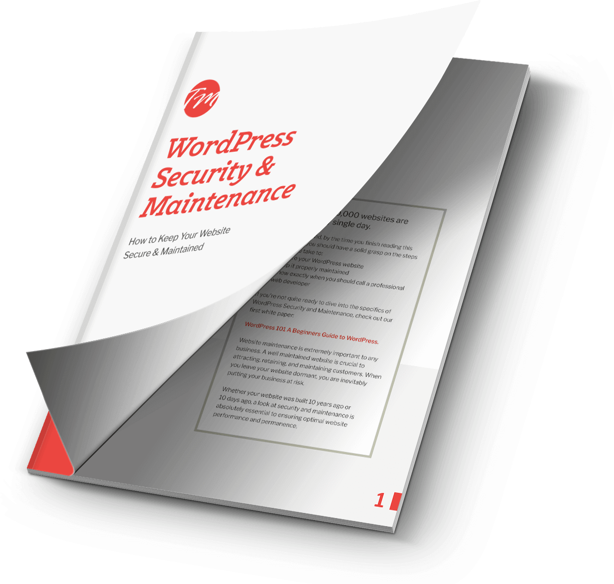 WordPress Security & Maintenance PDF Resource