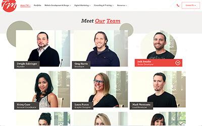 The WordPress Team Member Plugin by TM