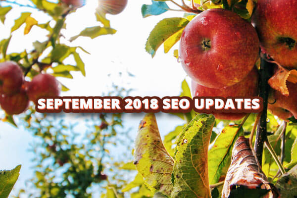 September 2018 SEO Updates