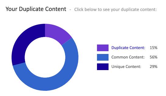 Duplicate Content in a SEO Audit