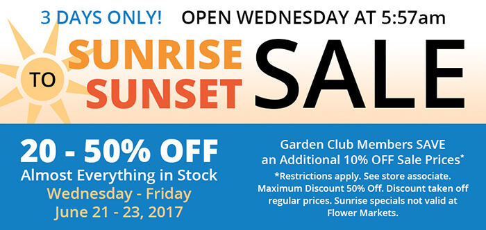 Sunrise to Sunset Sale